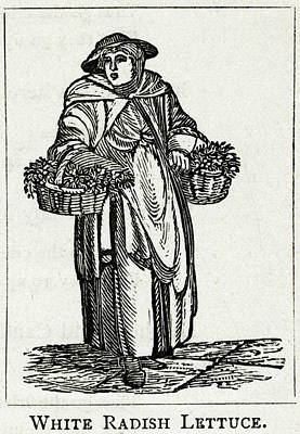 Lettuce Drawing - Woman Holding Her Baskets, Selling by Mary Evans Picture Library