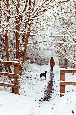 Tree-lined Photograph - Woman Walking Dog by Amanda Elwell