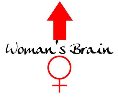 Parody Digital Art - Womans Brain by Jim Williams