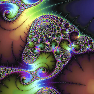 Floral Digital Art Digital Art Digital Art - Wonderful Colored Fractal Art Square Format by Matthias Hauser