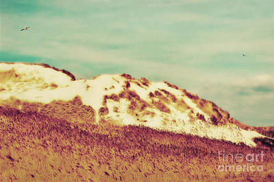 Wonderful Island Retro Art Print by Angela Doelling AD DESIGN Photo and PhotoArt