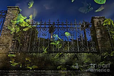 Photograph - Wonderland-1 by Casper Cammeraat