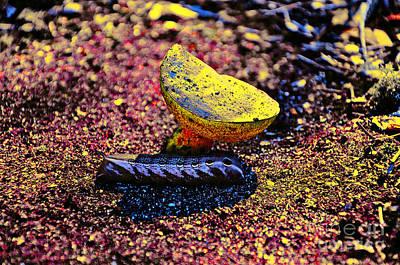 Mushroom Digital Art - Wonderland Worm by Al Powell Photography USA