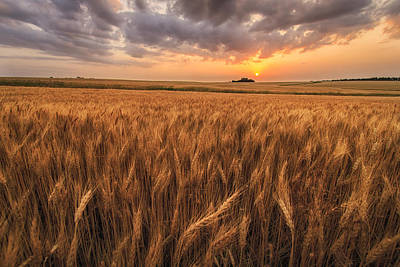 Grain Photograph - Won't Be Long by Scott Bean