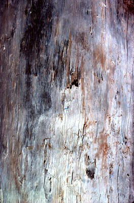 Photograph - Wood Abstract by Ben Kotyuk