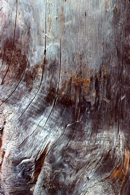 Photograph - Wood And Dirt Abstract by Ben Kotyuk