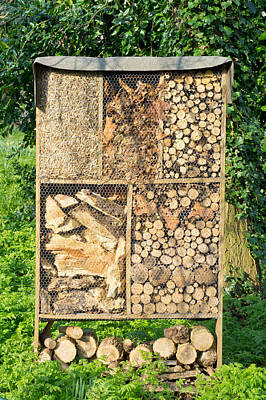 Wood And Straw Storage Art Print