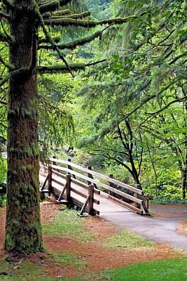 Photograph - Wood Bridge by Jane Girardot
