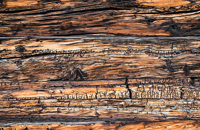 Photograph - Wood Detail - Chalet In Switzerland by Matthias Hauser