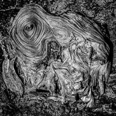 Photograph - Wood Detail by David Waldrop