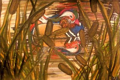 Painting - Wood Duck At Peace by Alexandria Weaselwise Busen