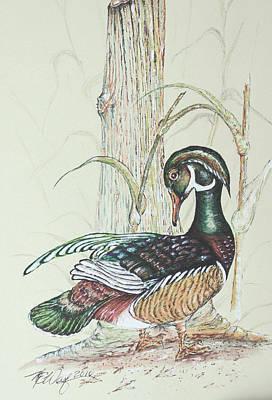 Wood Duck Mixed Media - Wood Duck II by Martin Way