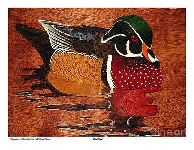Wood Duck Painting - Wood Duck by Phillip Squires