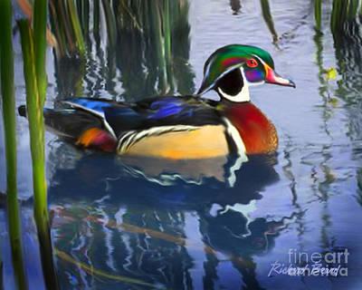 Wood Duck Art Print