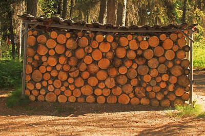 Photograph - Wood For The Winter by Ronald Olivier