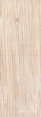 Abstract Royalty-Free and Rights-Managed Images - Wood Grain Panel by Tim Hester