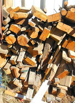 Photograph - Wood In Abstract by Esther Newman-Cohen