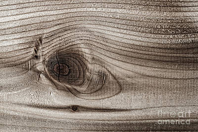Wood Grain Photograph - Wood Knot Abstract by Elena Elisseeva