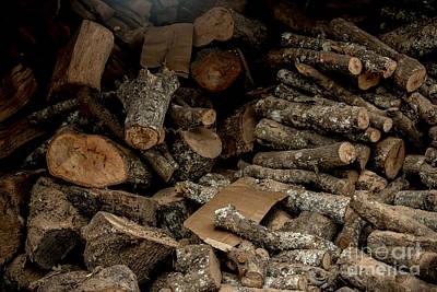 Photograph - Wood Logs by Mina Isaac