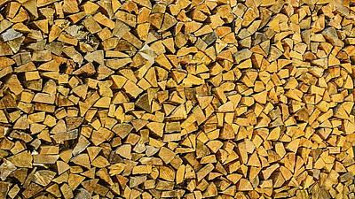 Birch Tree Photograph - Wood Pile Cut by LeeAnn McLaneGoetz McLaneGoetzStudioLLCcom
