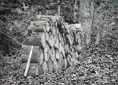 Photograph - Wood Pile by Keith Armstrong