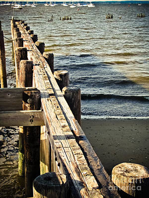 Photograph - Wood Pilings by Colleen Kammerer