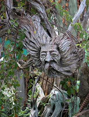 Photograph - Wood Sculpture Father Time by Suzie Banks