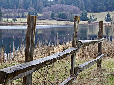 Photograph - Wood Split Rail Fence Near Lake Landscape Art Prints by Valerie Garner