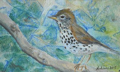 Painting - Wood Thrush - Bird in the Wild by Arlissa Vaughn