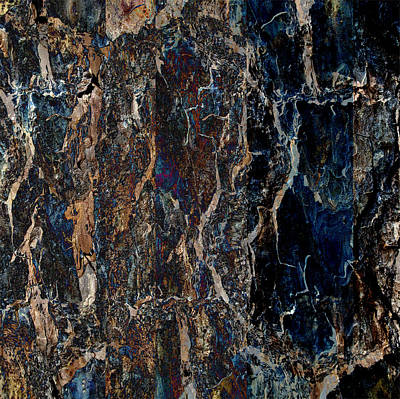 Photograph - Wood To Marble by Stephanie Grant