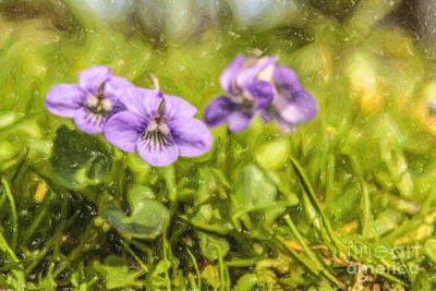 Digital Art - Wood Violet by Liz Leyden