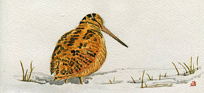 Woodcock Bird Print by Juan  Bosco