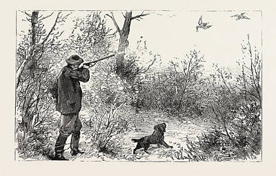 Woodcock Wall Art - Drawing - Woodcock Shooting by English School