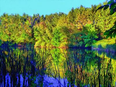 Wooded Shore Through Reeds Art Print by Dennis Lundell