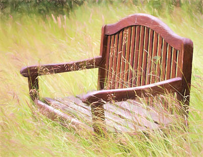 Photograph - Wooden Bench Versus Mother Nature by Peggy Collins