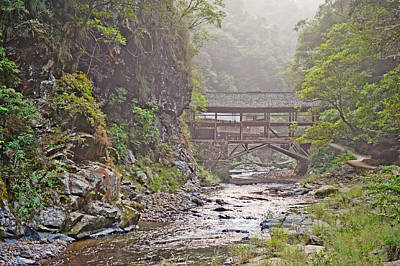 Photograph - Wooden Bridge In The Forest Guilin Mountains China by Marek Poplawski