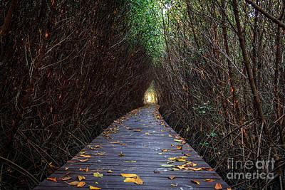 Wooden Bridge Art Print by Niphon Chanthana