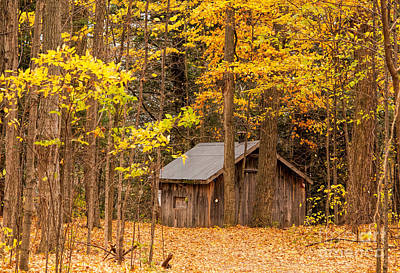 Photograph - Wooden Cabin In Autumn by Les Palenik