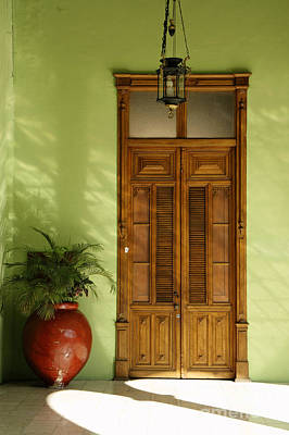 Photograph - Wooden Door And Plant Merida Mexico by John  Mitchell