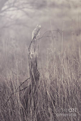 Photograph - Wooden Fence Post On A Foggy Winter Day by Jackie Farnsworth