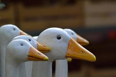 Wooden Geese Art Print