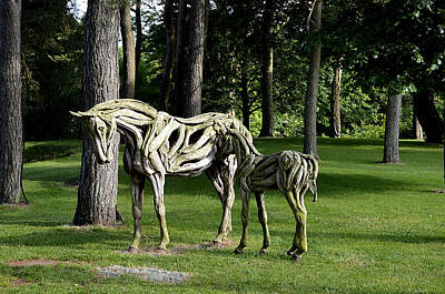 Photograph - Wooden Horses In The Woods by Richard Ortolano