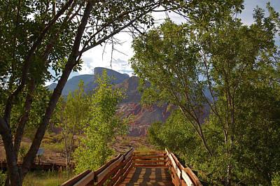 Photograph - Wooden Path by Leticia Latocki