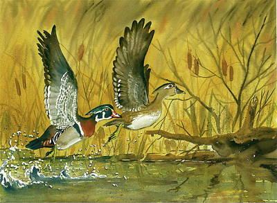 Wood Duck Painting - Woodies by Bud Bullivant