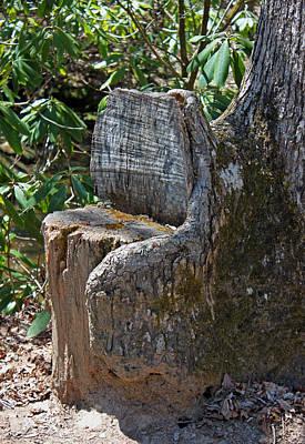 Woodland Chair Original