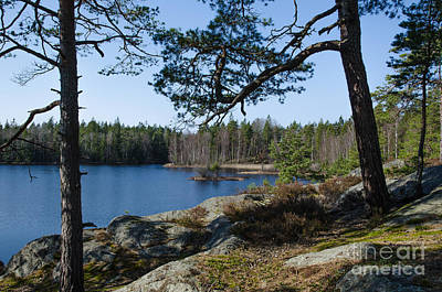 Photograph - Woodland Lake Scenery by Kennerth and Birgitta Kullman