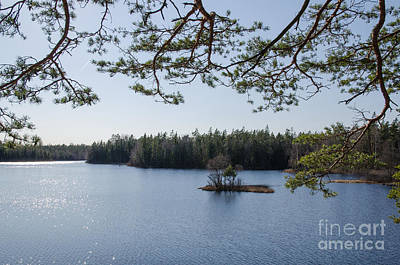 Photograph - Woodland Lake View by Kennerth and Birgitta Kullman
