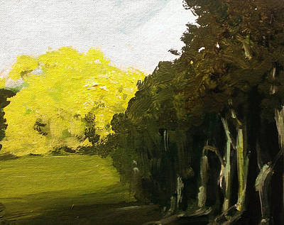 Painting - Woodland Light by Paul Mitchell