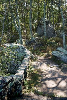 Photograph - Woodland Path With Stone Wall by MM Anderson