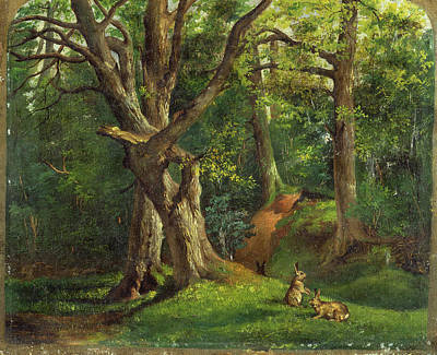 Woodland Scene With Rabbits Possibly Signed Art Print